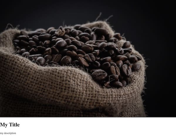 한 장의 커피 사진을 표시하는, 스타일이 지정되지 않은 story-viewer