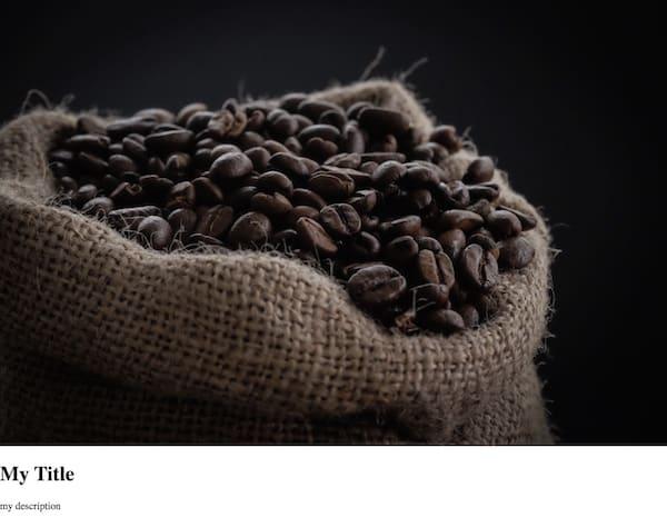一个未设置样式的 story-viewer,其中显示了一张咖啡图片